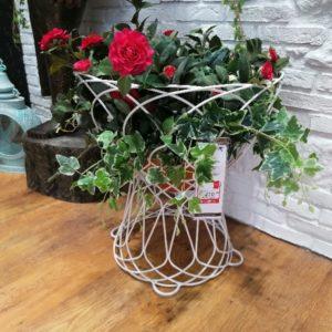 vaso giardino prezioso casa (1)